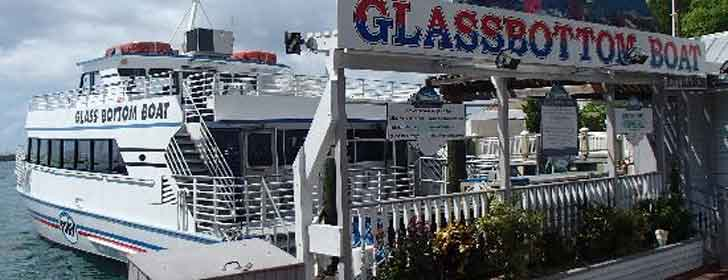 Glass Bottom Boat Discovery Tour, Key West Fotos